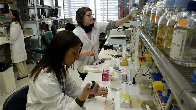 Grupo de investigación en un laboratorio de la Universitat de Barcelona.