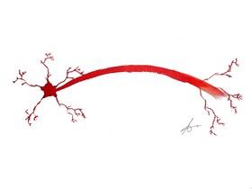 Neuronas de Navidad
