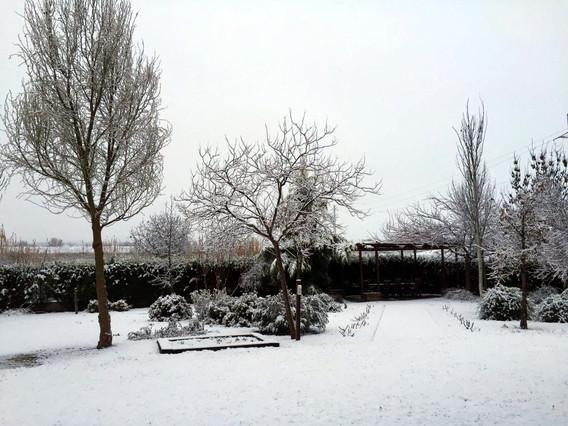 La neu deixa atrapats uns 60 vehicles a Prades