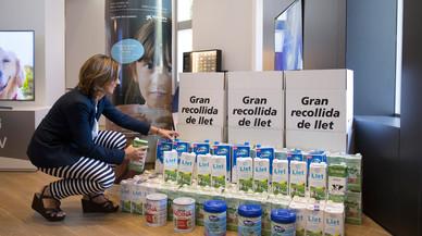 Recta final para la campaña de recogida de leche