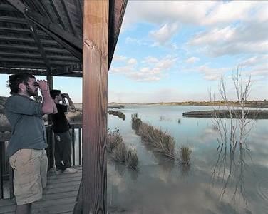 Observaci�n 8Uno de los miradores del lago de Ivars, que est� recuperando su fauna.