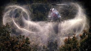 fsendra229534 pesticida170812190340