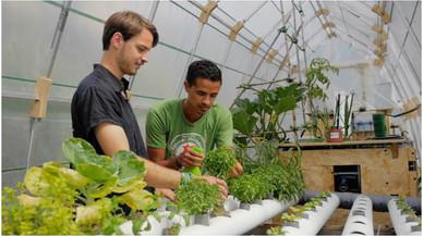 Guillaume Teyssié y Loic Le Goueff, en su invernadero del Green Lab de Barcelona.
