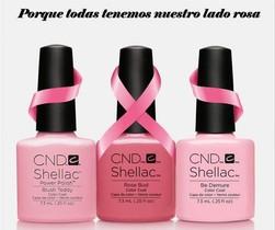 Belleza rosa contra el cáncer de mama