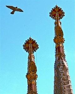 Un halcón sobrevuela el templo.