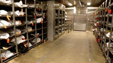 En la morgue del condado de Pima (Arizona) se almacenan los cad�veres a la espera de que los cuerpos sean identificados.