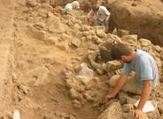 Trabajos en el yacimiento de Tell Qarassa Norte,cerca de la ciudad siria de Sweida (o As-Suwayda), donde se han hallado restos de cereales domesticados de hace 10.500 años.