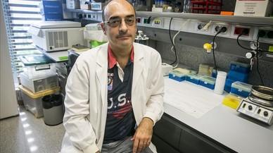 Carles Lalueza-Fox, investigador del Institut de Biologia Evolutiva de Barcelona (IBE), centro mixto CSIC-UPF, que ha encabezado el an�lisis gen�tico de las muestras con el par�sito plasmodio.
