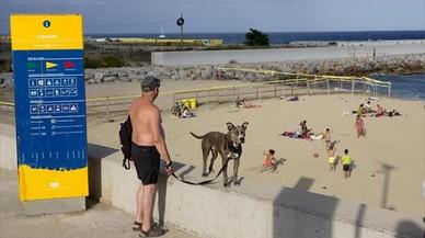 El mapa de las playas caninas que admiten perros este verano en España y Portugal