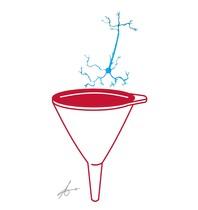 Colador neuronal