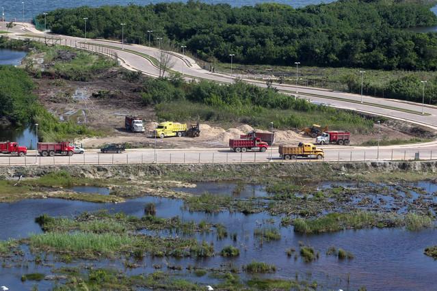 Una zona de manglar afectado por el desarrollo del proyecto Malecón Tajamar, en Cancún