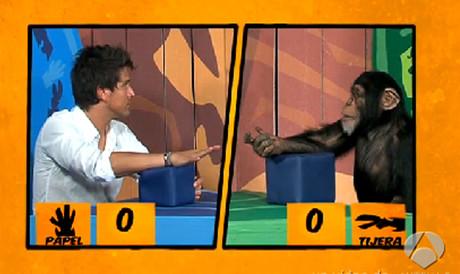 Programa de televisión 'Involución' con el mono Darwin jugando a piedra, papel o tijera.