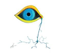 Llorar neuronas