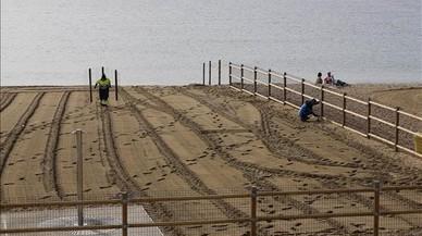 Operarios retiran las vallas de la zona de perros en la playa de Llevant.