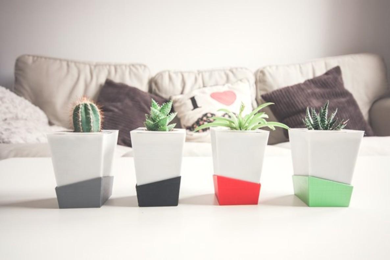 Kivi, el 'test intel·ligent' que et rega les plantes quan no hi ets