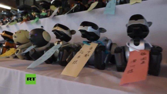 En el vídeo se puede ver un grupo de personas, despidiendo a los AIBO, que fueron los primeros robots de entretenimiento de uso doméstico del mundo capaz de desarrollar su propia personalidad.