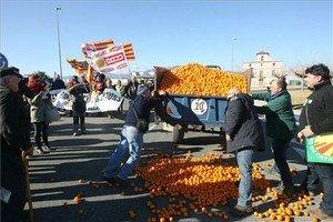 Pagesos participants en la tractorada descarreguen, aquest dissabte, un remolc de mandarines a la C-12 a laltura de Tortosa.