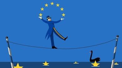La Unión Europea, nuestro cisne negro