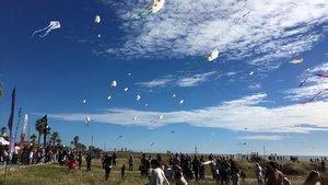 Cometas volando el domingo 11 de noviembreal mediodía en la playa de Castelldefels.