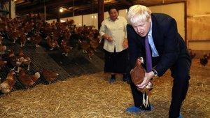 Boris Johson, ayer, en la visita a una granja de pollos en Gales.
