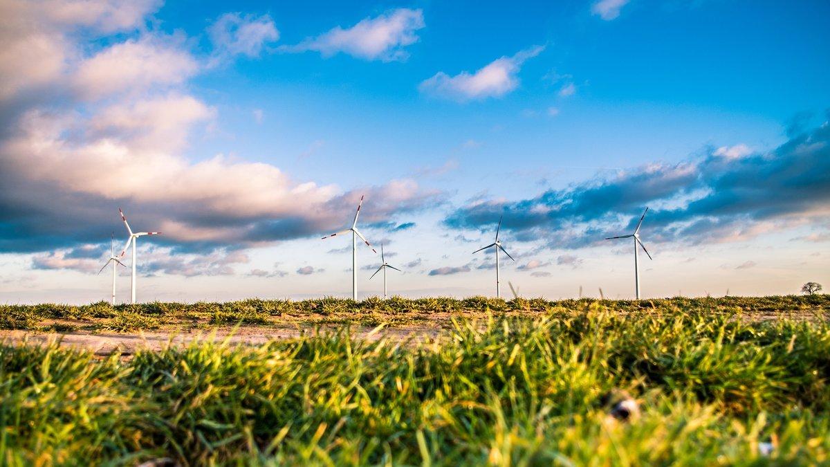 El 36% de los inversores tiene interés por la inversión sostenible en España.