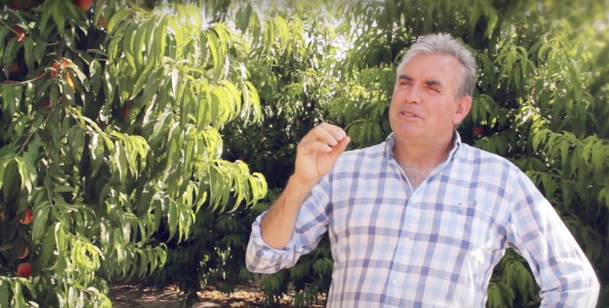 Jordi Ametller: «Els agricultors aficionats han de desaparèixer»