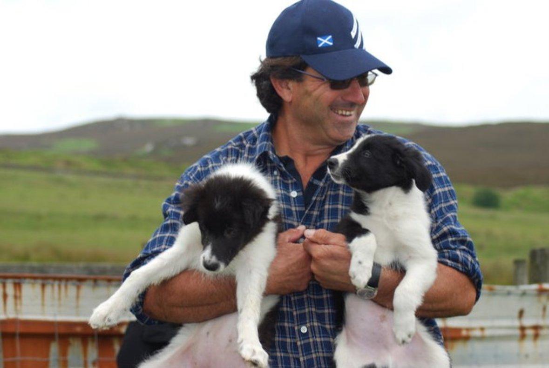 El pastor Jordi Muxach con dos cachorros de border collie