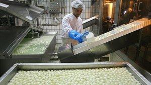 Un trabajador de una quesería elabora 'mozzarella' de búfala en la ciudad italiana de Mondragone, a 50 kilómetros de Nápoles.