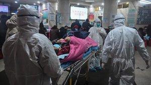 La Xina emet una alerta sanitària per un possible cas de pesta bubònica