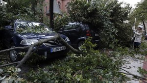 undefined40423361 a tree has crashed on cars during a heavy storm in berlin g171006125653