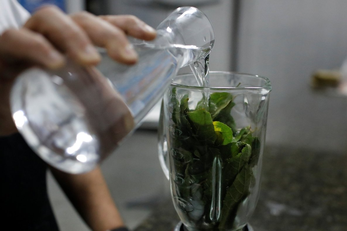 An HIV-positive man adds water to a blender with leaves of the tropical tree guasimo in Caracas  Venezuela. REUTERS Marco Bello