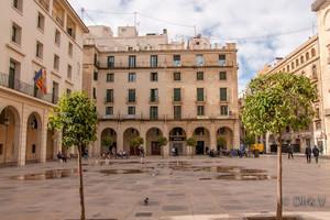 La Audiencia Provincial de Alicante.