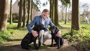 Guillem d'Holanda pot quedar-se sense caçar