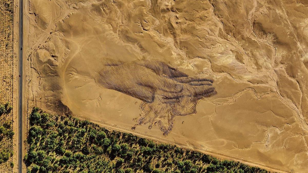 Intervención artística de Gerada en el desierto de Marruecos para el calendario Lavazza.