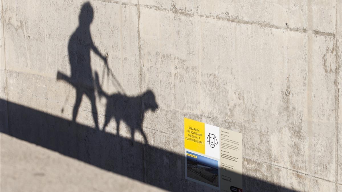 Una persona pasea a su perroen la playa de Llevant, en Barcelona.