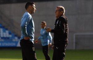 Suárez charla con Tabárez, el seleccionador uruguayo, en Budapest.