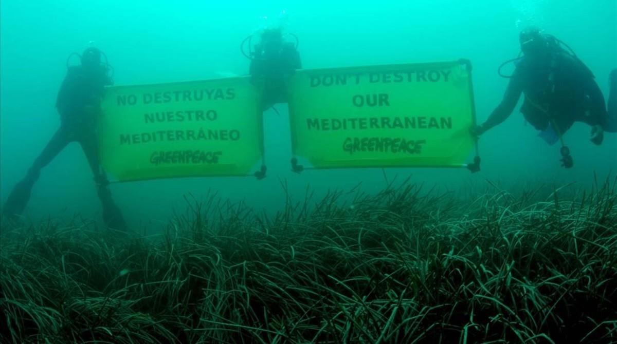 Carteles de Greenpeace sobre la salud del Mediterráneo