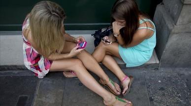 Mamíferos sociales
