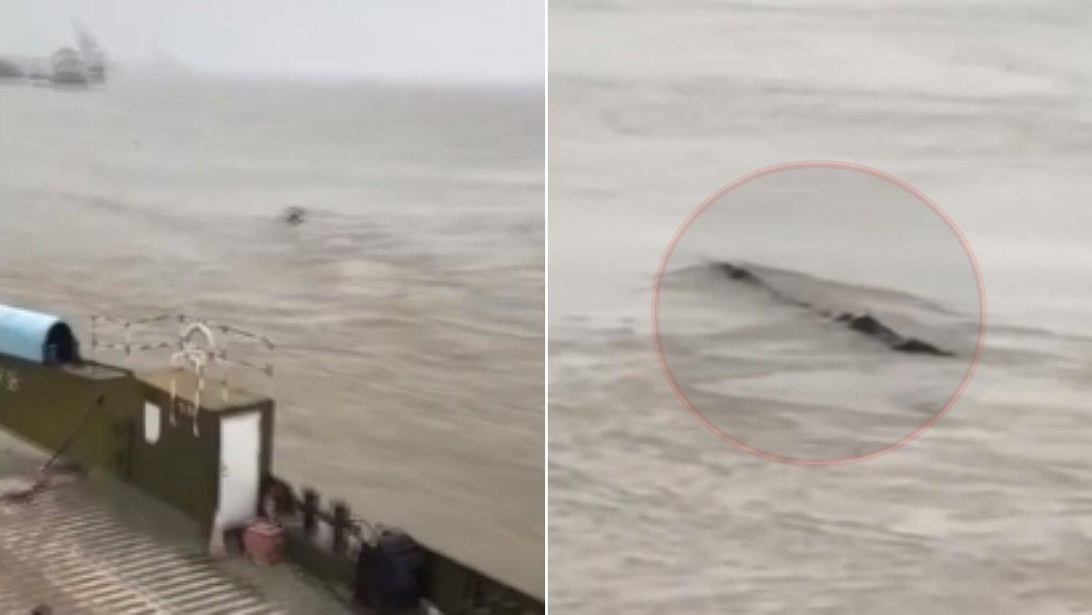 China cree haber encontrado su propio monstruo del Lago Ness en el río Yangtze.