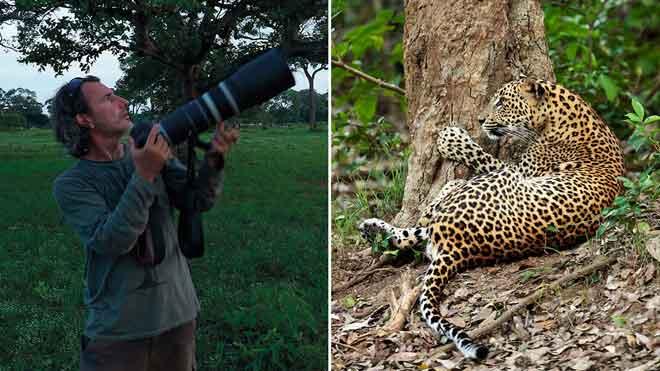 El fotógrafo Andoni Canela presenta 'Panteras', un proyecto sobre los grandes felinos y su lucha por sobrevivir.