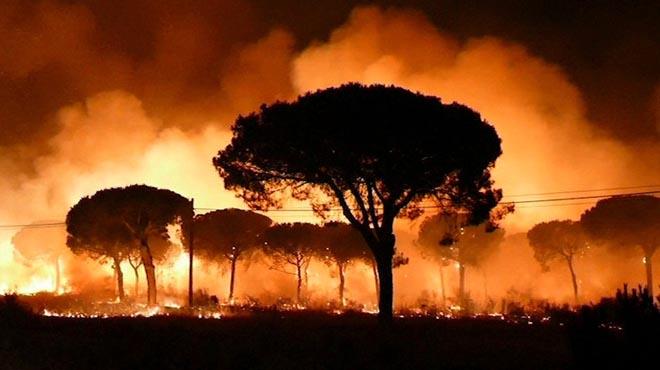 El incendio declarado anoche en el paraje La Peñuela de Moguer (Huelva) ha entrado en el Espacio Natural de Doñana.