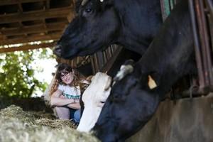 «¡Son granjas ganaderas, no santuarios animales!»