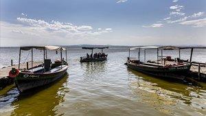 Barcas navegando porla Albufera de Valencia, este miércoles.