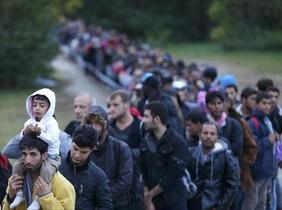 Un numeroso grupo de refugiados siguen su camino tras cruzar la frontera en Zakany (Hungría), ayer.