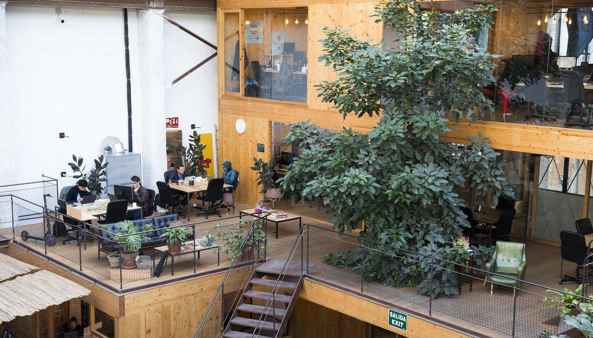 Imagen de las instalaciones del 'venture builder' Deminum, en Barcelona.