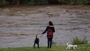 Alerta per la crescuda dels rius a Catalunya