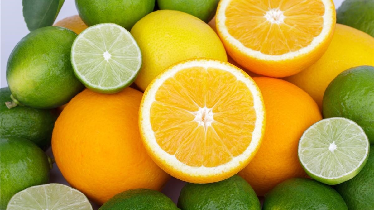 Resultado de imagen de citricos