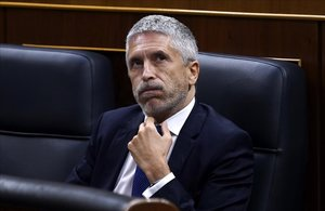 Sesioón de Control al Gobierno esta mañana en el Congreso de los Diputados ,en la imagen el ministro de InteriorFernando Grande-Marlaska .
