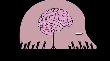 Etapas en el desarrollo de la mente