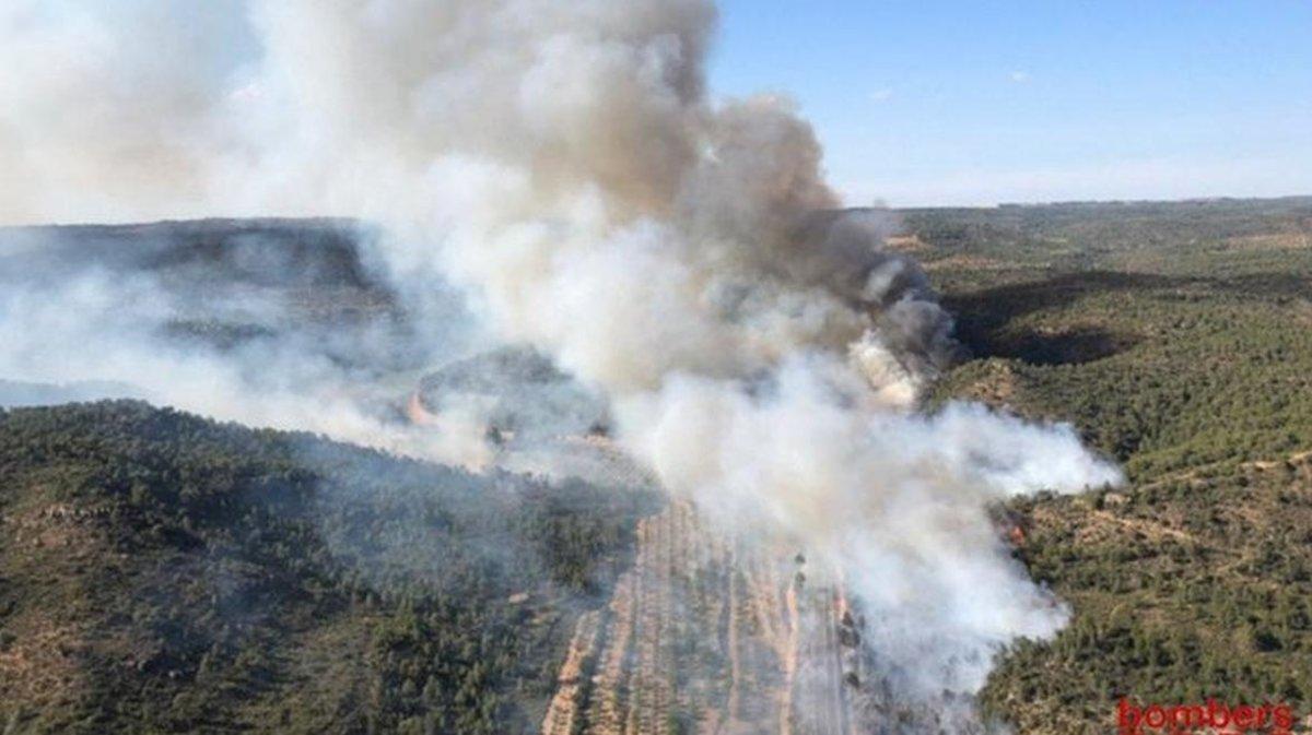 0b22c92c08 Una burilla, probable causa de l'incendi de Maials (Lleida), que. Els ...